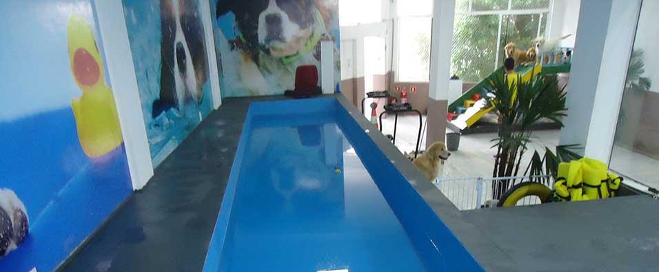 Empresa impermeabilizacao piscinas